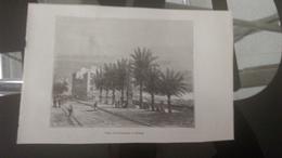 Affiche (illustration) - Place Des Palmiers à HYERES - Affiches