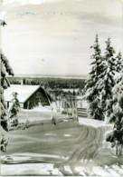 NORGE  NORWAY  HEDMARKSVIDDA  Hamar - Norwegen