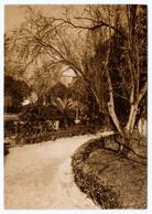 008 Aveiro Parque Da Cidade Infante D. Pedro Antigo Postal Fotografico - Aveiro
