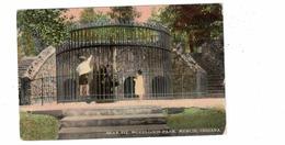 MUNCIE, Indiana, USA, Bear Pit, McCulloch Park, 1912 Knox Postcard - Muncie