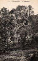 Carte Postale Ancienne - Non Circulé - Dép. 45 - MALESHERBES - La Grenouille - Malesherbes
