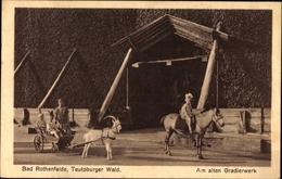 Cp Bad Rothenfelde Am Teutoburger Wald, Partie Am Alten Gradierwerk, Ziegenkarren - Allemagne