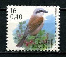 BELGIQUE 2000 N° 2933 ** Neuf MNH Superbe C 3 € Faune Oiseaux Pie Grièche écorcheur Birds Roulette - Ungebraucht
