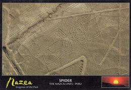Nazca Spider Ley Lines UFO Peru Peruvian Rare Sealed Postcard - Perú