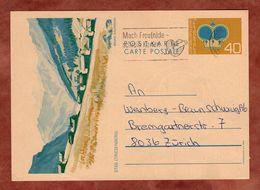 P 80 Y Krone, Abb Steg Triesenberg, Vaduz Nach Zuerich 1982? (91597) - Ganzsachen