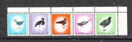 """Ajman   -  1972. Serie Ordinaria Mignon:  Striscia """" Uccelli"""". Rara Nuova. """"Birds"""" Strip. Very Rare MNH - Ostriches"""