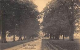 WESTERLOO - Dreef Der Abdij - Tilleuls De L'Abbaye - Westerlo