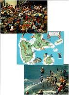 971 / GUADELOUPE /  Lot De 45 Cartes Postales Modernes écrites - Cartes Postales