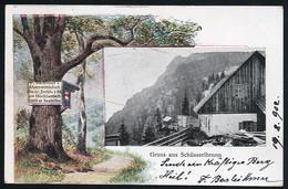 AK/CP Gruss Aus Schüsserlbrunn  Gel/circ.  1902   Erhaltung/Cond. 2-  Nr. 00950 - Altri