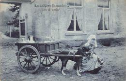 BRUGGE (W. VL.) La Laitière Flamande Les 2 Amis - Milk Cart - Hondekar - Brugge