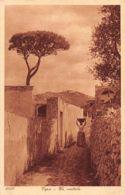 CAPRI (NA) Un Viottolo - Ed. Lehnert & Landrock 1050 - Italie