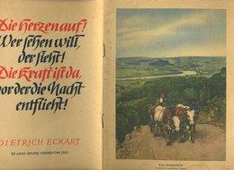 308  AM OBERRHEIN , OPUSCOLO DEL 1923 CON FOTO , SPITZ AN DER DONAU , IN DER WACHAU , SCHLOSS  SCHON BUHEL - 5. World Wars