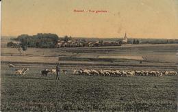 ROMONT. Vue Générale - Autres Communes
