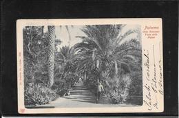 Palermo 1902,Orto Botanico, Viaggiata (ref C124) - Palermo