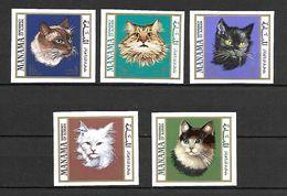 Manama 1968 Animals - Cats Imperforate MNH (T0175) - Manama