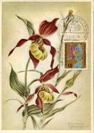 51870  Germany, Maximum 1963 Frauenschuh (Cypripedium Calceolus) - Maximum Cards