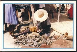 °°° 19033 - NORD CAMERUN CAMEROUN °°° - Camerun