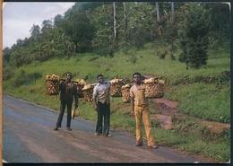 °°° 19037 - CAMERUN CAMEROUN - MAIZE TRANSPORTERS - 2005 With Stamps °°° - Camerun