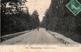 Carte Postale Ancienne - Circulé - Dép. 45 - MALESHERBES - Route De PUISEAUX - Malesherbes
