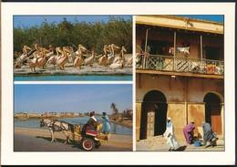 °°° 19051 - SENEGAL - ST. LOUIS - CALECHE TYPIQUE °°° - Senegal