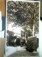 TORINO Novalesa Nel Parco Della Villa Del Convitto Umbeto I   N1930  HL5485 - Education, Schools And Universities