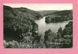 C.P. Ortho =  Confluent  Des  Deux  Ourthes - La-Roche-en-Ardenne