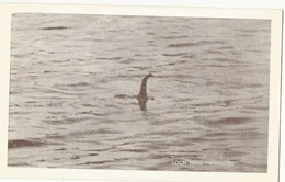CPSM ,R.U. ,N° PT.37142 , Loch Ness Monster , Repro De 1934,  1972 - Inverness-shire
