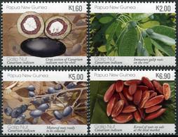 Papua New Guinea 2019. Galip Nuts (Canarium Indicum) (2019) (MNH OG) Set - Papouasie-Nouvelle-Guinée