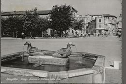Senigallia - Largo Ancona E Fontana Delle Oche - H6349 - Senigallia