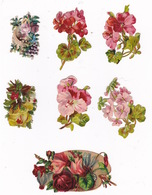 Joli Lot De 7 Découpis Fin XIXe Siècle, Fleurs - Fleurs
