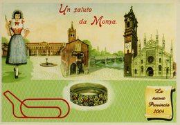 MONZA E BRIANZA - MONZA - LA NUOVA PROVINCIA NELL'ANNO 2004 - N 208 - Monza