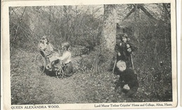CPA, R.U ,Queen Alexandra Wood ,Lord Mayor Trelear Cripples Home And College ,Alton ,Ed.Card Mayor - Andere