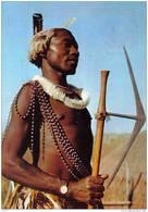 Carte Postale Afrique Swaziland   Guerrier  Très Beau Plan - Swasiland