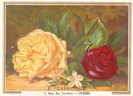 Orthez  - Grand Chromo Fleurs 13  X 9.5 P. Larroque - Other