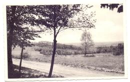 Kluisberg - Orroir - Pavillon Maes - Strubbe - Kluisbergen
