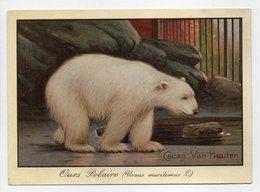 - CHROMO CACAO & CHOCOLAT VAN HOUTEN - Ours Polaire - - Van Houten