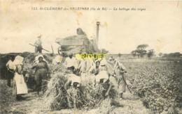 Ile De Ré, St Clément, Le Battage Des Orges, Beau Plan Des Moissonneurs Et D'une Vieille Batteuse à Vapeur - Ile De Ré