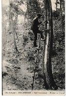 Landes BISCARROSSE Forêt Communale Résinier Au Travail - Biscarrosse