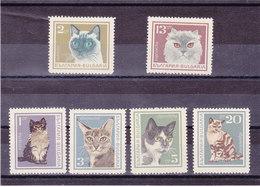 BULGARIE 1967 CHATS Yvert 1505-1510 NEUF** MNH - Bulgarie