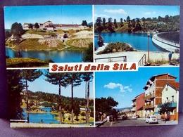 (FG.L05) SALUTI DALLA SILA - VEDUTE VEDUTINE (viaggiata 1969) - Italia