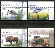 Moldova 2018 Moldavia / Birds Mammals MNH Vögel Säugetiere Aves Mamíferos Oiseaux Uccelli / Cu16404  40-47 - Pájaros