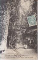 Luxeuil Les Bains Allee Des Platanes   1907 - Luxeuil Les Bains