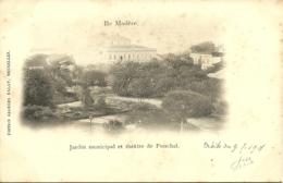 Portugal - Madeira - Jardin Municipal E Theatre Du Funchal - Precurseur - Madeira