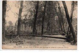 Bar-sur-Aube-Le Petit Chemin De Mathaux Après Le Passage Du Cyclone Du 17 Juin 1911 - Bar-sur-Aube