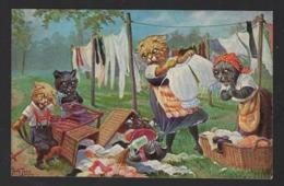 Chats - Cats - Katten - Kätze - Habillees - Dressed - Aangekleed - Ill. Thiele - - Chats