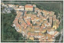 SANTA MARIA A MONTE - PISA - VISTA DALL'ALTO -45802- - Altre Città