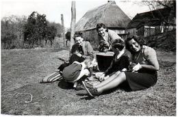 Photo Originale 30 Millions D'Amis, Rencontre Entre Pin-Up & Jeunes Chiots à La Ferme 1940/50 - Pin-Ups