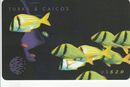 Turks And Caicos Islands - Yellow Fish - 108CTCC - Turks & Caicos (I. Turques Et Caïques)