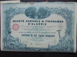 LOT DE 5 TITRES - STE AGRICOLE ET FINANCIERE D'ALGERIE - ACTION B DE 100 FRS - PARIS,et, ALGER 1928 - BELLE ILLUSTRATION - Zonder Classificatie
