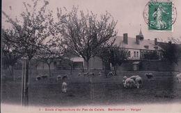 Ecole D'agriculture Du Pas De Calais Berthonval Verger (1908) - France